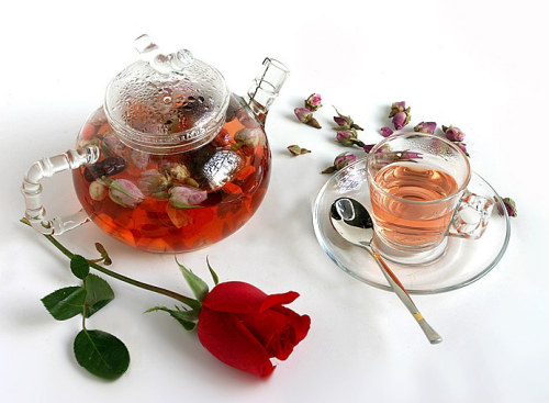 trà hoa sen tốt cho lập trình