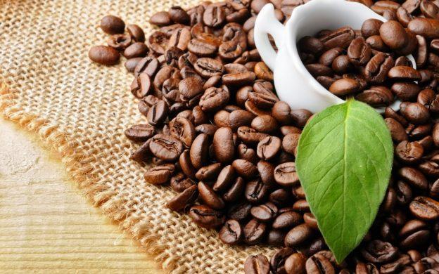 cà phê hoàng net