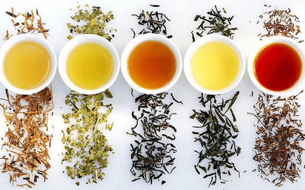 Chế biến các loại danh trà
