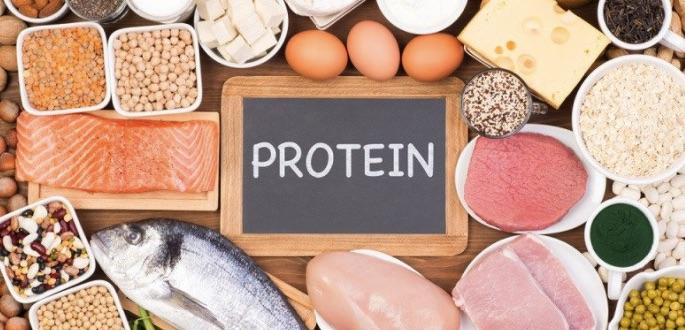 Chú trọng đồ ăn chứa đạm Protein